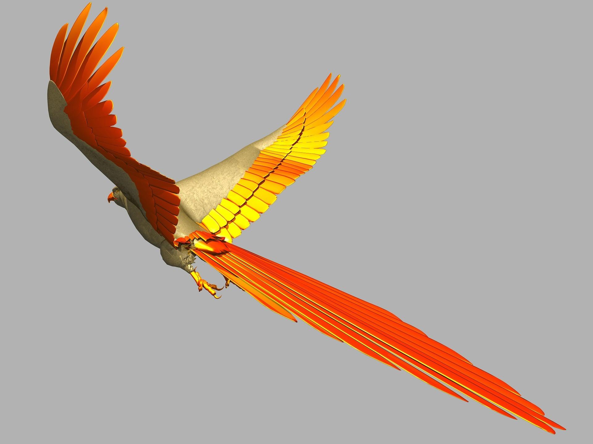 parrot-542482_1920